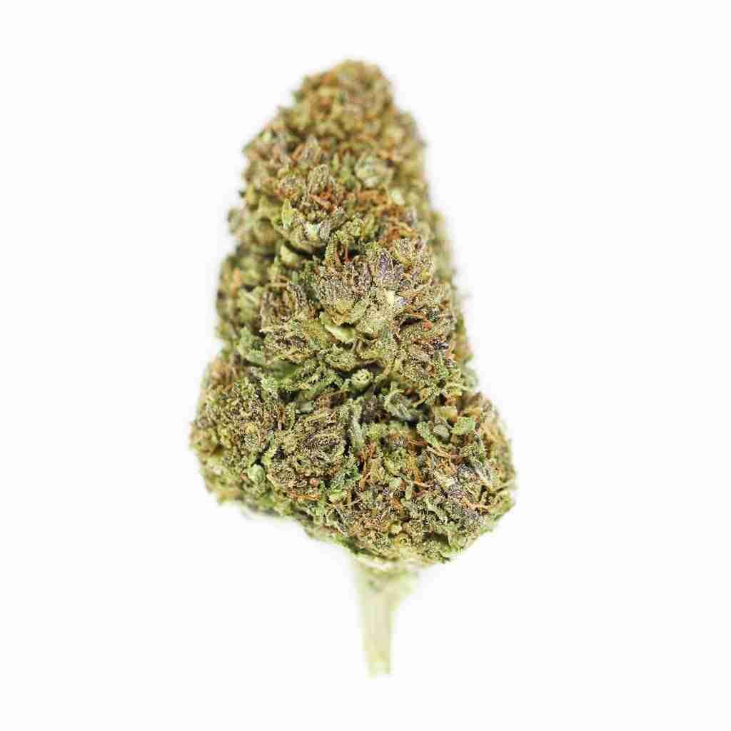 Hawaiian Haze CBD Flower Bud