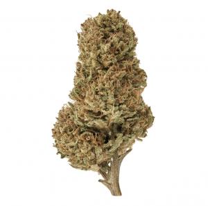 Sour Space Candy Cannabis CBD Strains