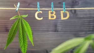 The Best CBD for Stress and Anxiety. Our Favorite Oils for 2020 – How Covid-19 has Increased the Need for Cannabis Products
