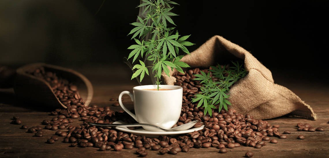 Where to Buy the Best CBD Coffee Beans and CBD Coffee Grounds